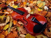 Violin in Autumn Leaves — Stock Photo