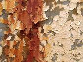 Peeling Paint — Stock Photo