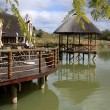 African Safari  Resort - Stock Photo