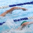 Stock Photo: Swimming Competition