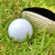 Stock Photo: Golf ball in the rough