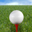 Golf Ball on Tee — Stock Photo #2273593