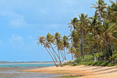 Deserted Beach in Brazil — Stock Photo