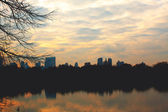 Central Park at Dusk — Stock Photo