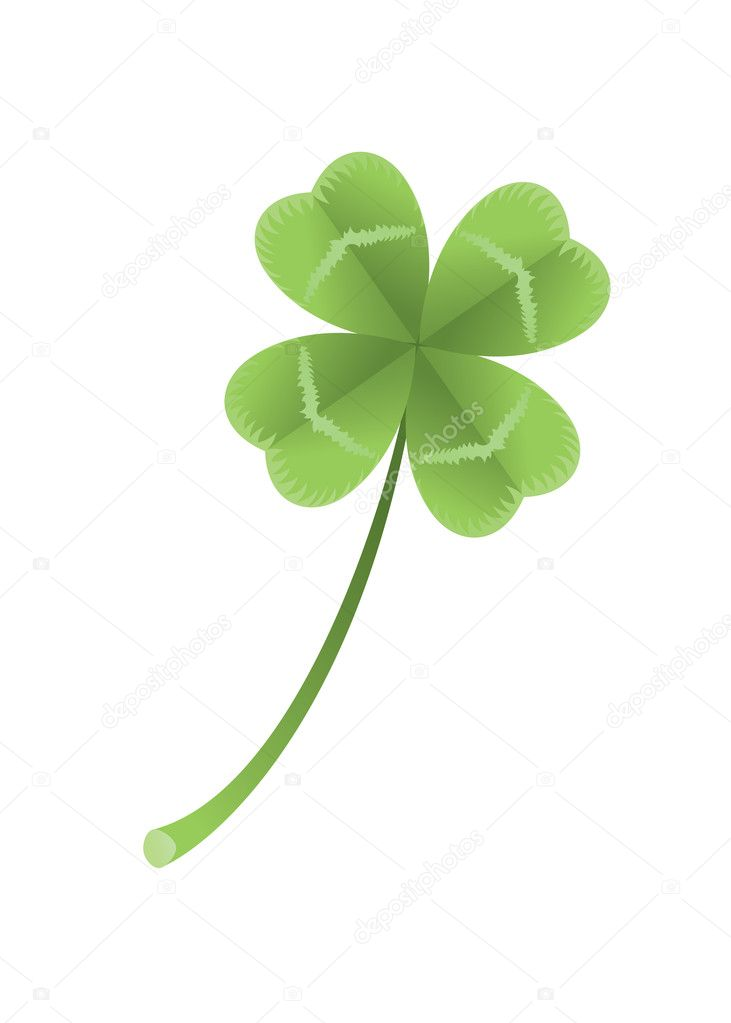 Vector illustration of a clover with four leaves on white background.  — Stock Vector #2279017