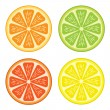Citrus fruit — Stock Vector #2565091
