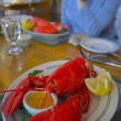 Stock Photo: Maine lobster