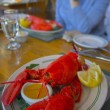 Maine lobster — Stock Photo