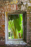 Tropical architecture — Stock Photo