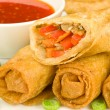 Chinese Spring Rolls — Stock Photo #2227390