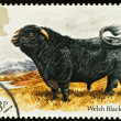 British Dog Postage Stamp - Stock Photo