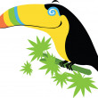 Stock Vector: Toucan