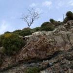 Crete Landscape — Stock Photo #2591228