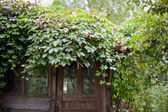 Entrance of old abandoned garden house — Stock Photo
