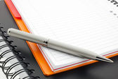 Pen and two paper notebooks — Stock Photo