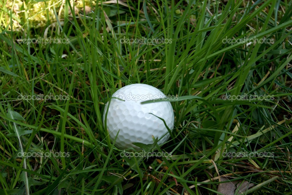 A golf ball in the middle of thr grass  Stock Photo #2559843