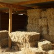 Stock Photo: Bales of straw
