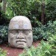 Olmec head — Stock Photo