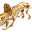 Trex skeleton isolated on white — Stock Photo