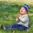 Stock Photo: Smiling little boy on green meadow