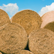 Straw stack for animal feed — Stock Photo