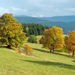 Autumn landscape — Stock Photo #2479425