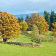Autumn landscape — Stock Photo #2479431