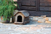 Dog's kennel — Stock Photo