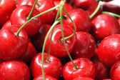 Closeup cherry — Stockfoto