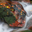 Detail of stream in autumn - Stock Photo