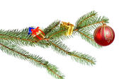 Christmas decoration isolated — Stock Photo