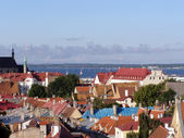 Roofs of old Tallinn — Stock Photo