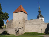 The Tallinn town hall — Stock Photo