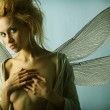 Girl with wings. — Stock Photo