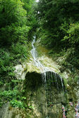 Pitoresca cachoeira — Foto Stock