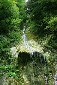 如诗如画的大瀑布 — 图库照片