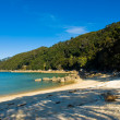 Stock Photo: Abel tasmnational park