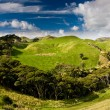 Green hills — Stock Photo #2308850