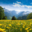 View from Braunwald — Stock Photo