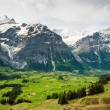 Grindelwal valley in spring - Stock Photo
