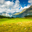 Stock Photo: Scenic view at Maloja