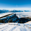 Stock Photo: Panoramfrom Niederhorn in Winter