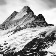 Stock Photo: Schreckhorn