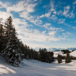 Winter scene above Amden — Stock Photo #2347254