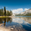 Stock Photo: Tenaylake yosemite
