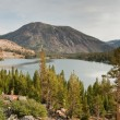 Tioga lake in yosemite national park — Stock Photo #2348606
