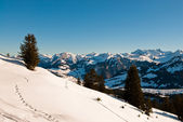 Winter scene in swiss alps — Stock Photo