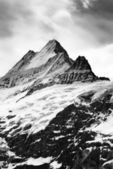 Schreckhorn — Stock Photo