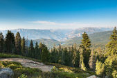 Kings canyon national park — Stock Photo
