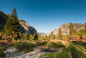 Kings canyon valley — Stock Photo